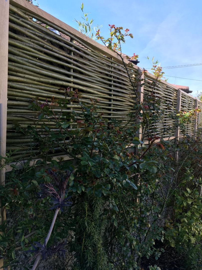 Garden willow fence